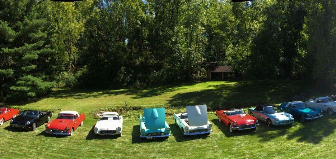 The Classic Thunderbird Club of Northern Ohio Club Picnic