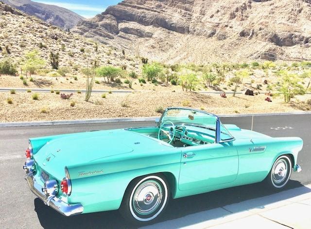Desert Bird West Las Vegas