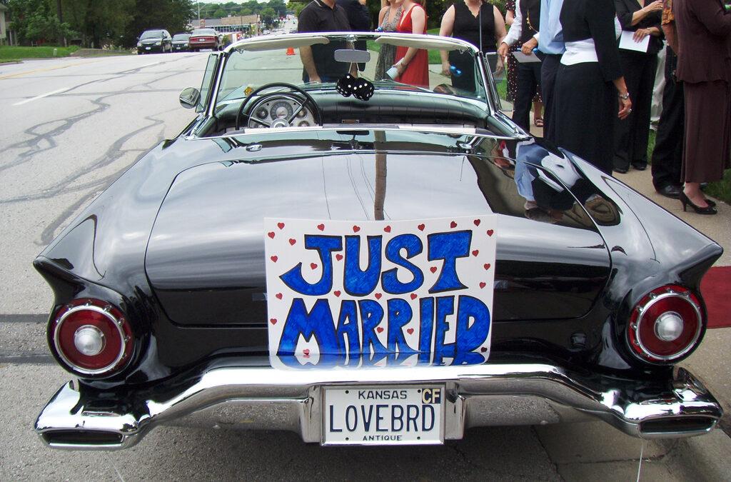 Love Birds – Just Married
